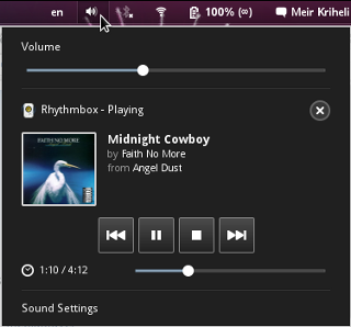 Media player indicator